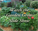 "Winter 2012: ""Watch the Garden Grow"" Slide Show"