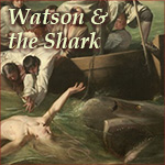 Watson and the Shark