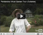 2007 Virtual Garden Tour 12: Outtakes
