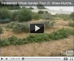 2007 Virtual Garden Tour 3: Straw-Mulched Sections