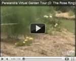 2007 Virtual Garden Tour 4: Rose Ring