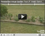 2007 Virtual Garden Tour 6: Insect Sanctuary