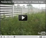 2007 Virtual Garden Tour 8: Woods-Edge and Meadow