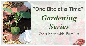 One Bite Gardening Series