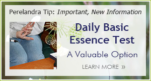 Tip Basic Essence Test