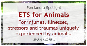 Spotlight ETS for Animals