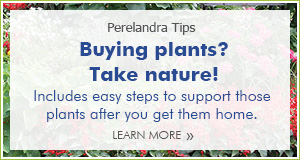 Take nature with you to buy plants