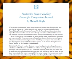 Perelandra Nature Healing Process for Companion Animals
