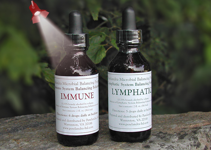 Immune and Lymphatic Solutions
