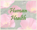 Human Health for Beginners