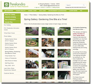 Feature Garden Gallery