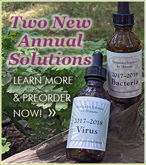 PreOrder New Solutions
